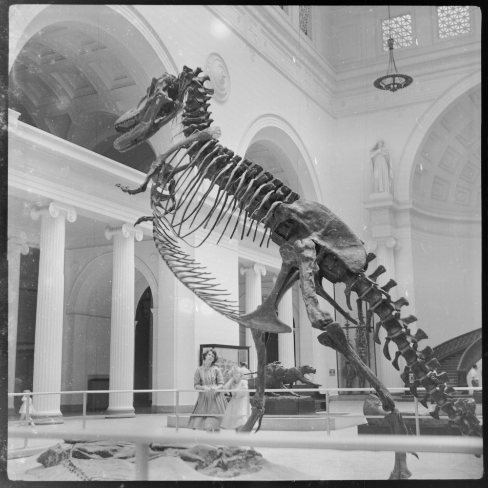 Scan of two girls viewing T-Rex exhibition (unknown location c. 1949-1955)